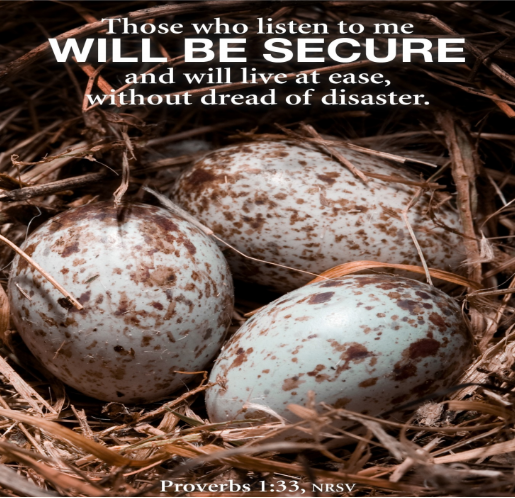 Picture of a nest with speckled bird's eggs. Text on picture reads: Those who listen to me will be secure aand will live at ease, without dread of disaster.--Proverbs 1:33, NRSV