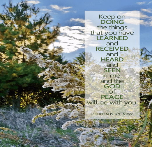 "A pine tree and flowers are seen against a beautiful morning sky. Text is the words of Phillipians 4:9-- ""Keep on doing the things that you have learned and received and heard and seen in me, and the God of peace will be with you."""