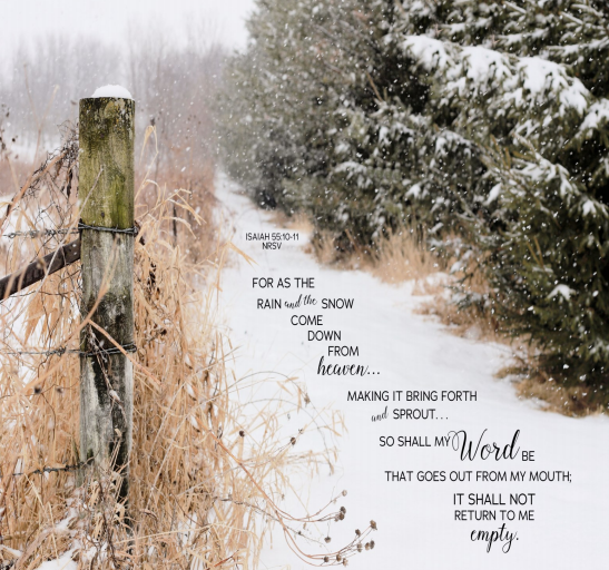 """A snowy tree-lined country lane. A fencepost is in the foreground. Text is from Isaiah 55:10-11—""""As the rain and the snow come down from heaven, and do not return to it without watering the earth and making it bud and flourish, so that it yields seed for the sower and bread for the eater, so is my word that goes out from my mouth: It will not return to me empty, but will accomplish what I desire and achieve the purpose for which I sent it."""""""