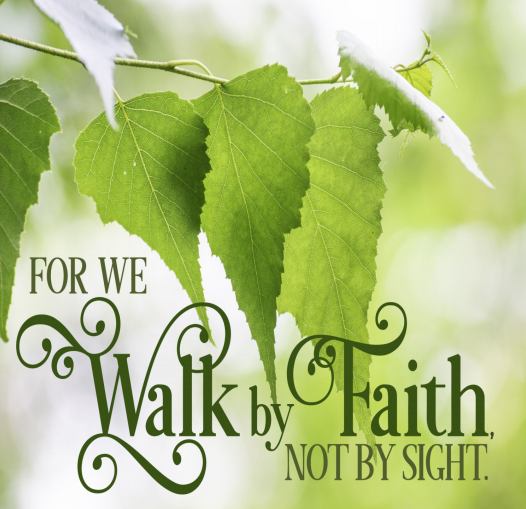 """Beautiful green leaves on a tree branch. Text is the words of Second Corinthians 5:7—""""For we walk by faith, not by sight."""""""