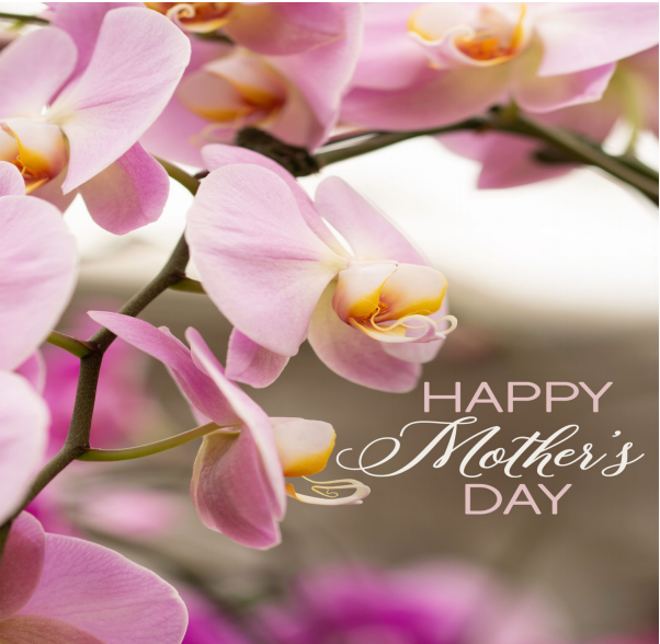 Beautiful pink and purple flowers. Text reads: Happy Mothers Day