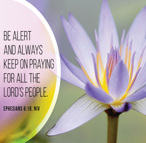 """A beautiful flower in white, yellow and purple. We see the words of Ephesians 6:18—""""be alert and always keep on praying for all the Lord's people."""""""